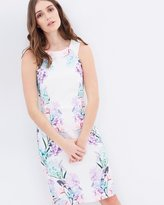 Dorothy Perkins Printed Placement Pencil Dress