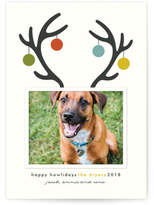 Minted Happy Howlidays Holiday Photo Cards
