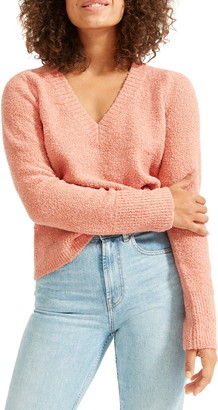 Everlane The Teddy V Neck Sweater