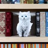 Garudio Studiage Cardboard Flat Pet White Kitten
