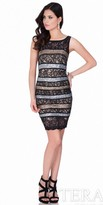 Terani Couture Sequin and Lace Paneled Cocktail Dress