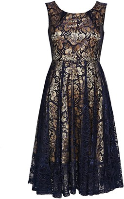 Wallis **Jolie Moi Navy Contrast Lace Midi Fit and Flare Dress