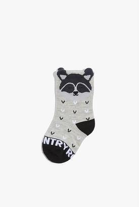 Country Road Raccoon Sock