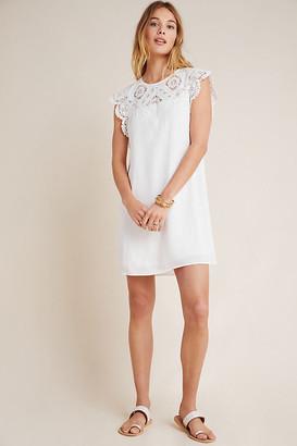 Daniel Rainn Melia Lace Mini Dress By in White Size L