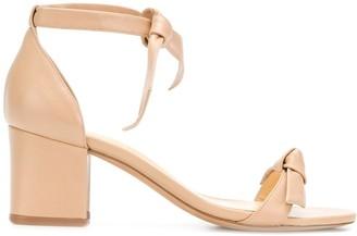 Alexandre Birman Ankle Tie Block Heel Sandals