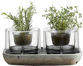 Nude Herb Garden - Set of 2
