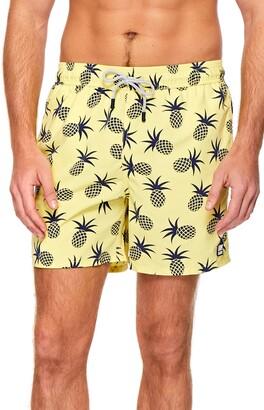 Trunks Tom & Teddy Pineapple Print Swim