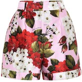 Dolce & Gabbana Floral cotton and silk shorts