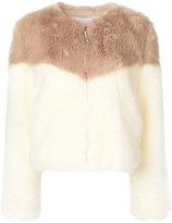 Dondup contrast fur jacket - women - Acrylic/Modacrylic/Polyester - 40