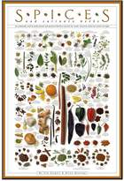 Art.com ''Spices and Culinary Herbs'' Wall Art