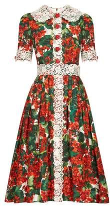 Dolce & Gabbana Lace Geranium Print Cotton Poplin Dress - Womens - Red Multi