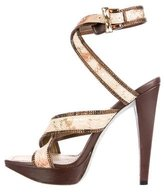 Rene Caovilla Snakeskin Embellished Sandals