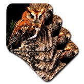 3dRose LLC Owl Ceramic Tile Coaster, Set of 8