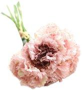 Hosamtel 1 Bouquet 6 Heads Artificial Fake Flowers Carnations Silk Floral Wedding Bouquet For Vase Wedding Party Decoration Home Decor Wedding Bridal Decoration F9