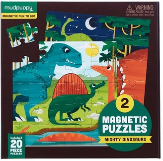 Pottery Barn Kids Dinosaur Magnetic Puzzle