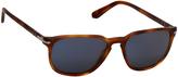 Persol Terra Di Sienna & Blue Tortoise Round Sunglasses