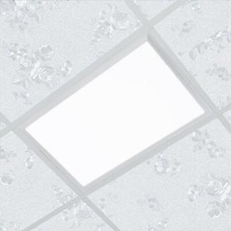 2' W LED Flat Panel Light BNJ