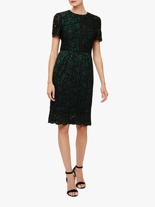 Phase Eight Jessie Lace Dress, Forest Green