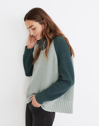 Madewell Colorblock Eastbrook Turtleneck Cross-Back Sweater in Cotton-Merino Yarn