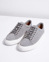 Campbell Suede Trainers