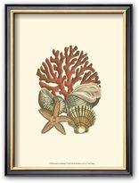 "Art.com Coral Medley I"" Framed Art Print"