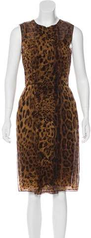 Dolce & Gabbana Leopard Midi Dress