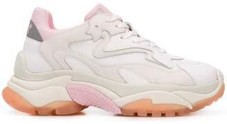 Ash Addict low-top sneakers