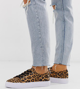 Asos Design DESIGN Wide Fit Dusty lace up sneakers in leopard