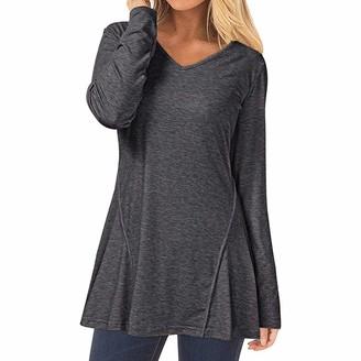 kolila Women's Casual Long Sleeve Henley Designer V-Neck Loose Fit Pleated Flare Tunic Shirt Blouse Tops (Gray XL)