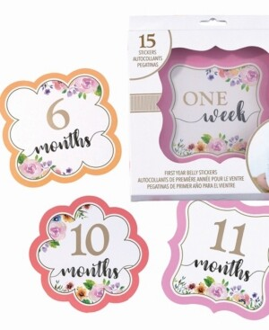 Lillian Rose Baby Belly Stickers, Set of 1-15