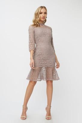 Little Mistress Leonora Oyster Crochet Peplum Bodycon Dress