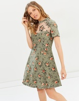 The Kooples Garden Roses Crepe de Chine Dress