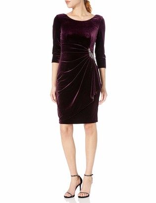 Alex Evenings Women's Velvet Dress with Sleeve and Hip Detail (Regular and Petite)