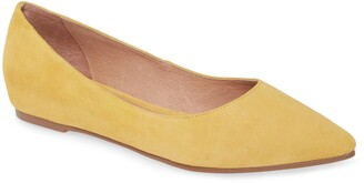 Caslon Laurel Pointed Toe Water Resistant Flat