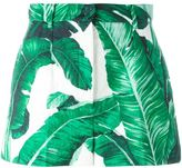 Dolce & Gabbana tropical shorts