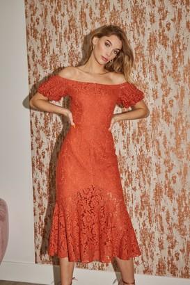 Little Mistress Winnie Rust Lace Bardot Peplum Midi Dress