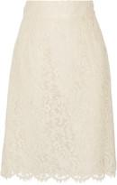 Dolce & Gabbana Corded lace skirt