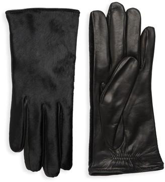 Portolano Dyed Calf Hair Leather Gloves