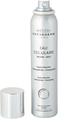 Institut Esthederm Cellular Water Mist