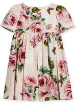 Dolce & Gabbana Short-Sleeve Cotton Rose Dress, Size 2-6