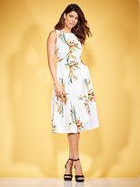 New York & Co. Eva Mendes Collection - Felicity Dress