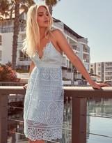 Bardot Lace Skater Dress