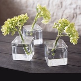 Roost cube vase