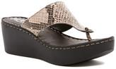 Seychelles Essential Sandal