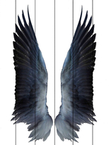 Parvez Taj Black Wings (Wood)