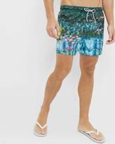 Ted Baker Flamingo Print Swim Shorts Green
