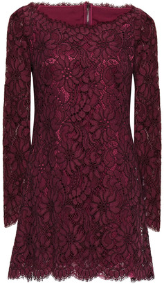 Dolce & Gabbana Cotton-blend Corded Lace Mini Dress