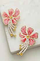 Shourouk Hibiscus Drop Earrings