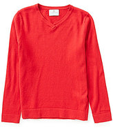 Class Club Big Boys 8-20 V-Neck Long-Sleeve Sweater