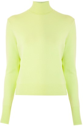 Gloria Coelho Turtle Neck Knit Jumper